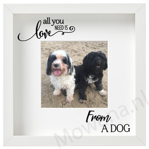 All you need is love from a dog FL001