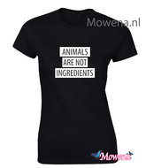 Dames-Animals-are-not-ingredients138