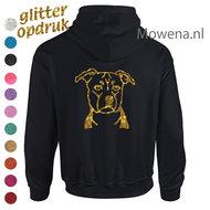 Stafford-Hoodie-met-glitteropdruk-ak-div.kleuren-DH0057