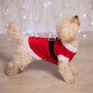 Kerstmankostuum-voor-hond